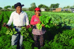 El buen comer, un trabajo para la Economía Popular